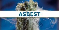 a_asbest